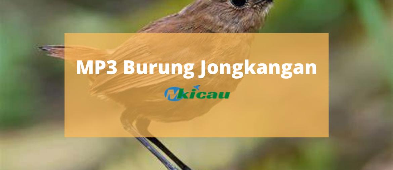 MP3 Burung Jongkangan